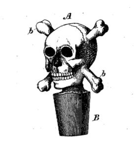 skullcork